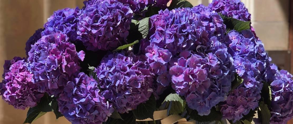 order-flowers-in-geneva