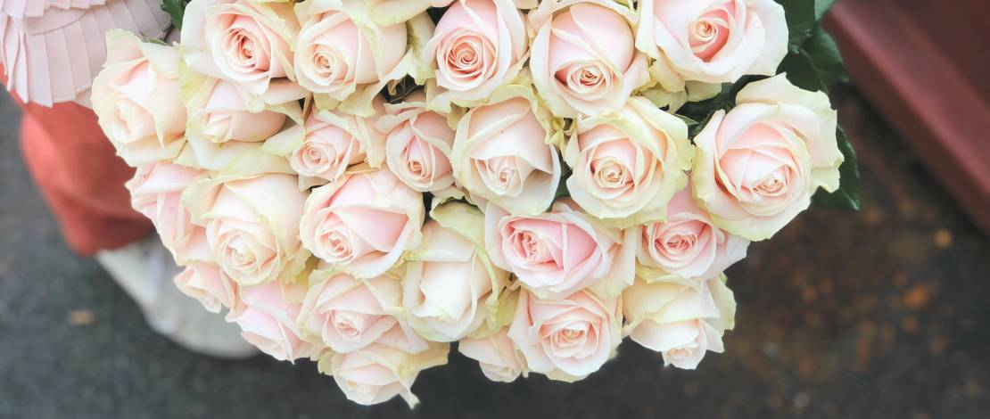 roses-livraison-geneve-fleuriste