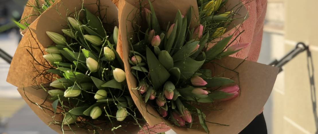 tulipes-genevoises-fleuriot-fleurs-2