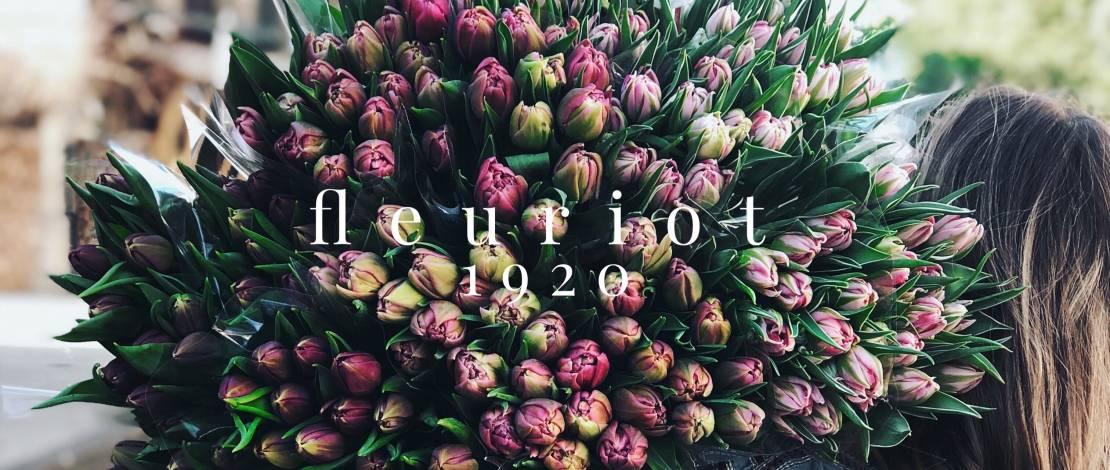 tulipes-genevoises-fleuriot-fleurs-3